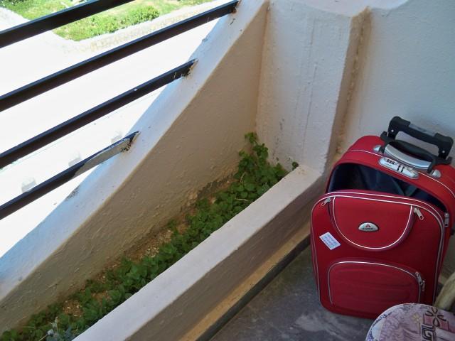 Клумбы с какой-то растительностью прямо на балконе